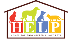 HELP - Homes for Endangered & Lost Pets